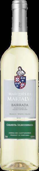 Marquês de Marialva branco